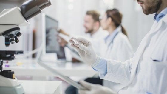 le femmine possono stringere il sarcoma alla prostata