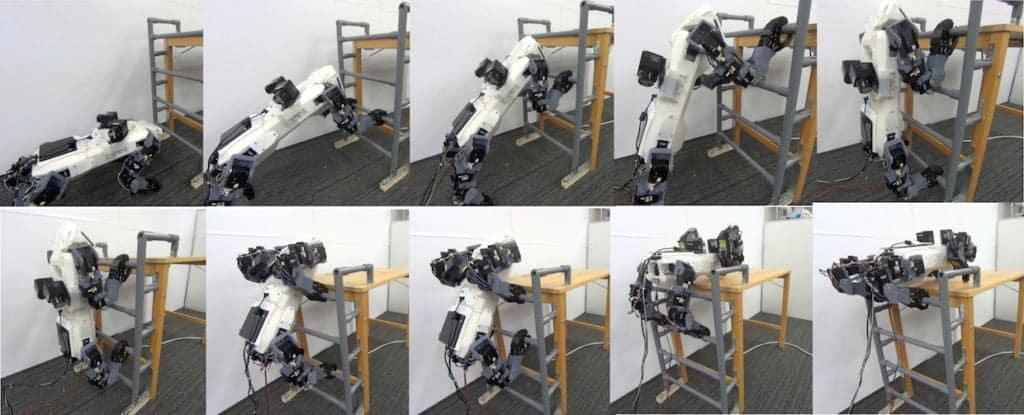 Robot quadrupedi