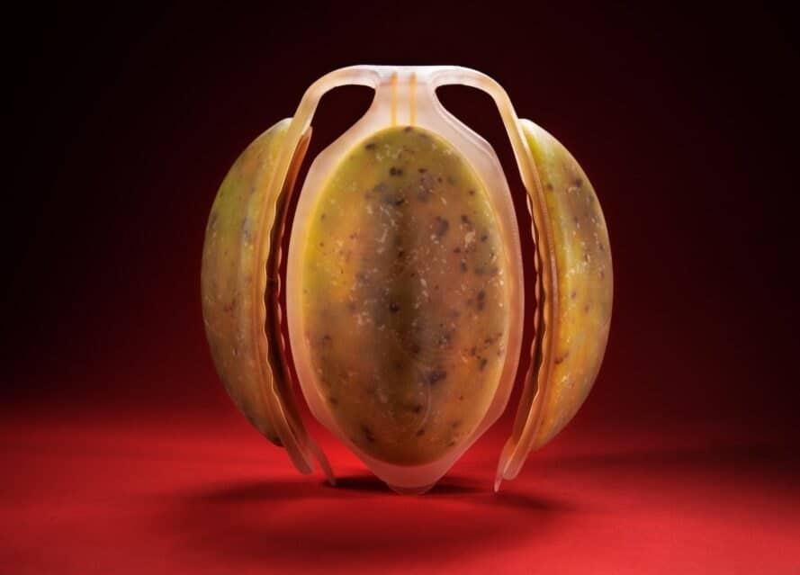 Neo Fruits, la frutta del futuro