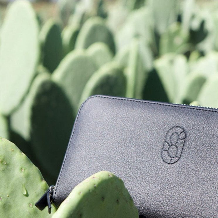 Desserto cuoio e pelle dai cactus cruelty free
