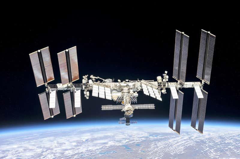 Funghi sul reattore di Chernobyl assorbono le radiazioni spaziali sulla ISS