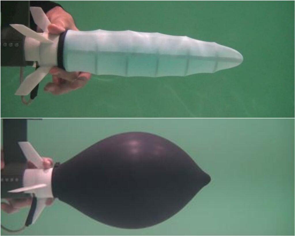 calamaro robot sottomarino del futuro