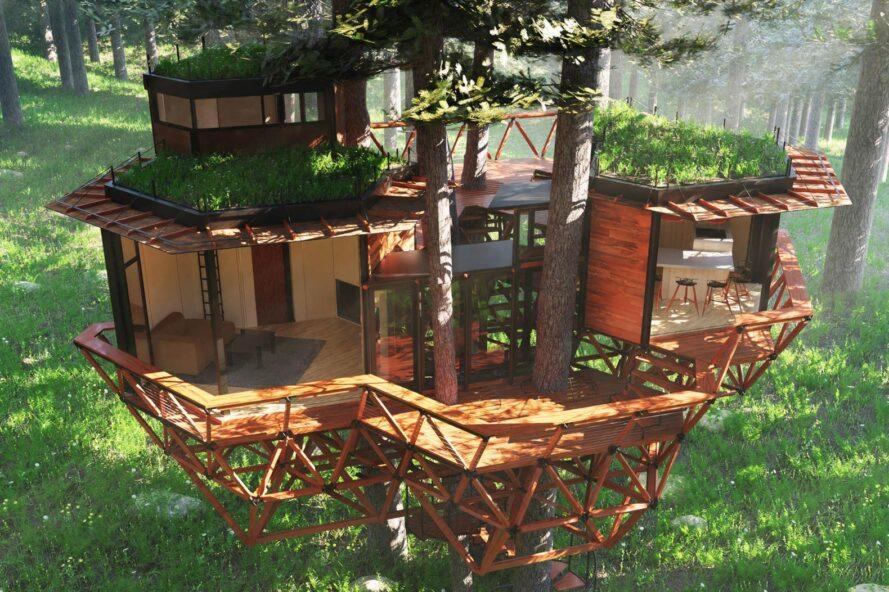 Treewalkers, rete di case sugli alberi