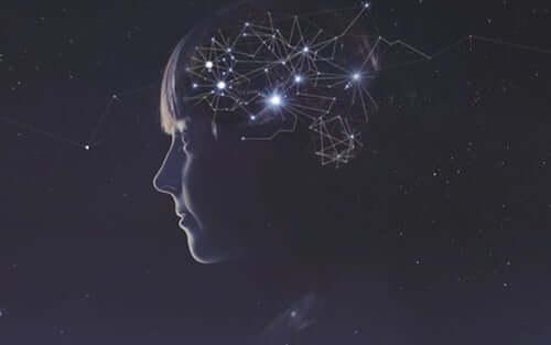 Connettoma e coscienza