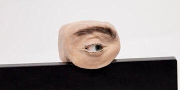 webcam eyecam